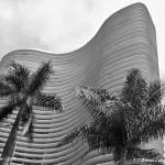 Ed. Niemeyer | Ariano Cavalcanti de Paula